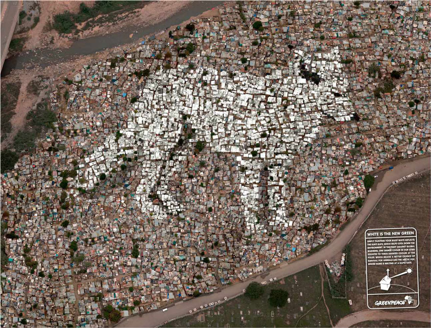 public-social-ads-animals-111