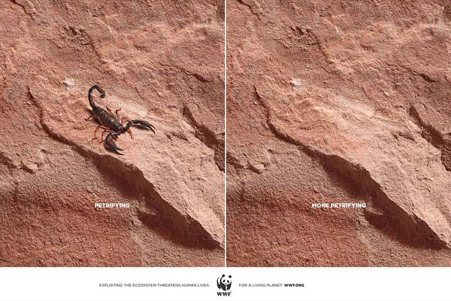 public-social-ads-animals-119