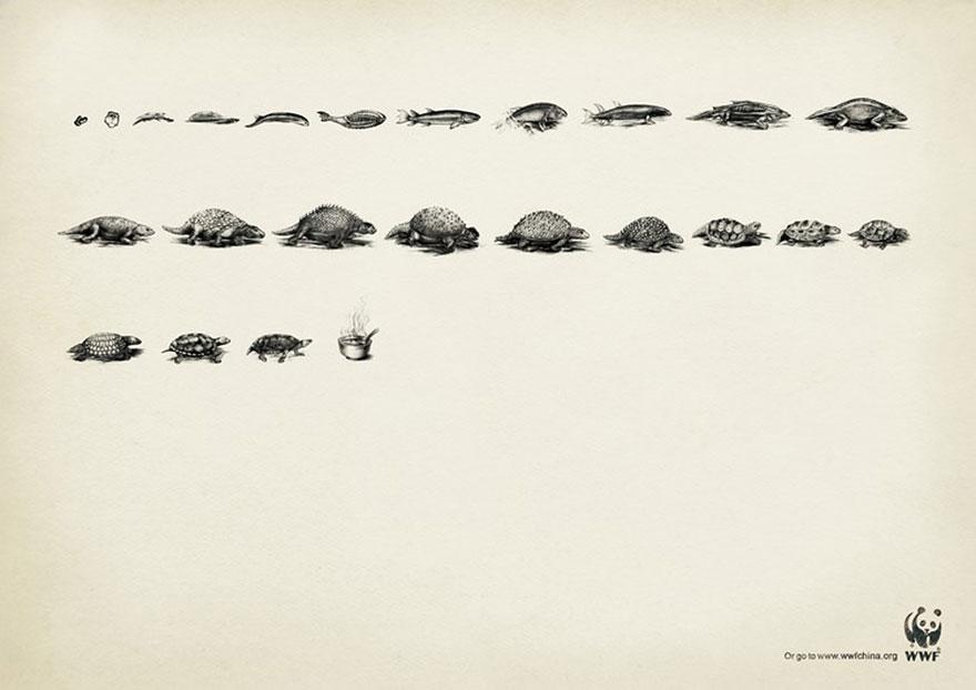 public-social-ads-animals-55