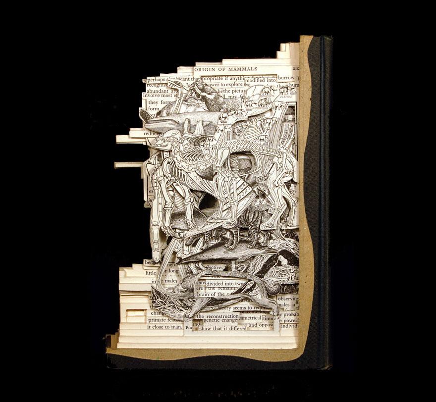 paper-sculpture-book-surgeon-brian-dettmer-28