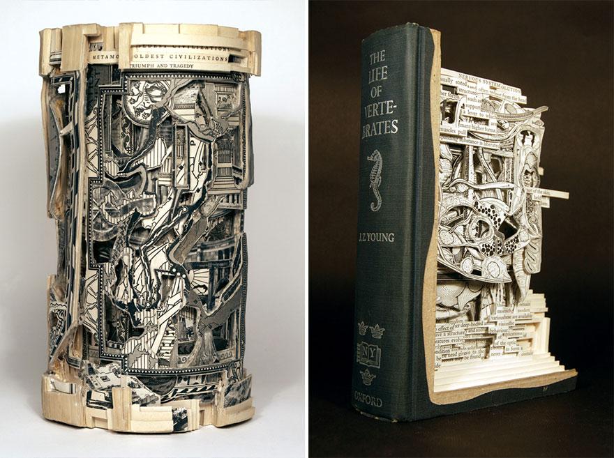 paper-sculpture-book-surgeon-brian-dettmer-32