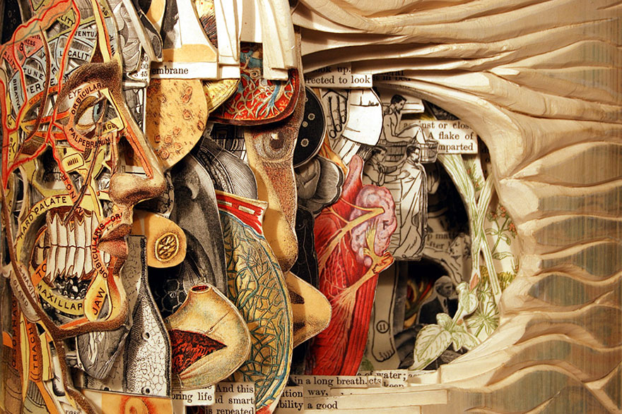 paper-sculpture-book-surgeon-brian-dettmer-5