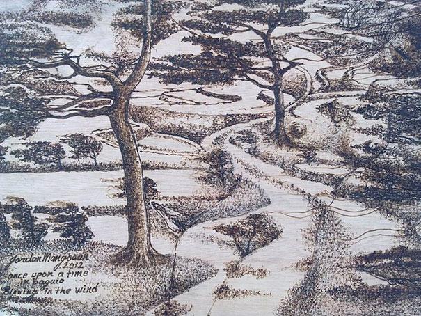 sunlight-drawing-pyrography-art-jordan-mang-osan-12