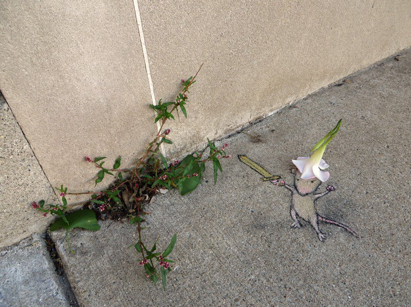 By-David-Zinn-in-Michigan-USA-890986