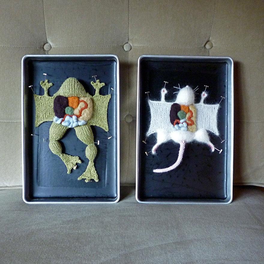knit-animal-dissection-anatomy-emily-stoneking-aknitomy-1