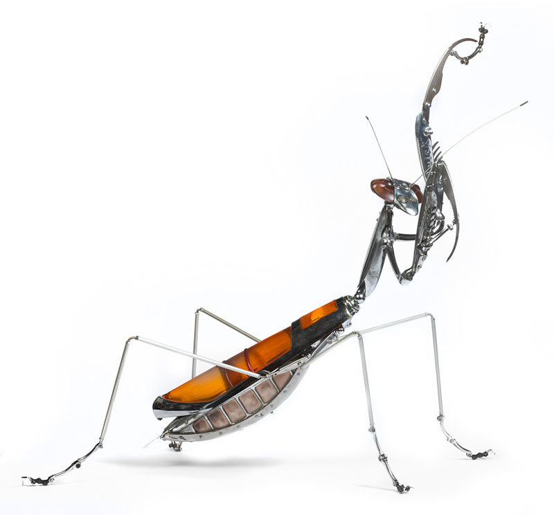 insects-and-animals-made-from-scrap-metal-and-bike-parts-edouard-martinet-7