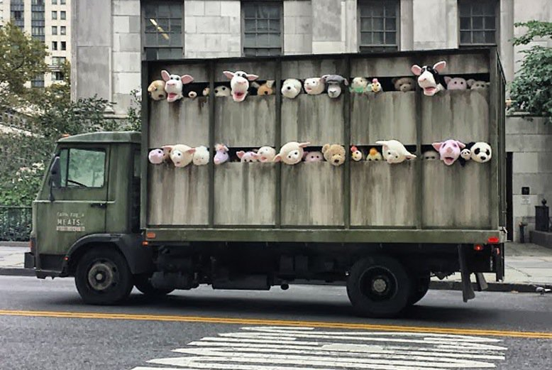 The-Sirens-of-the-Lambs.-In-New-York-USA