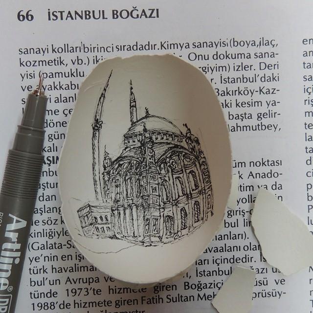 noyan7