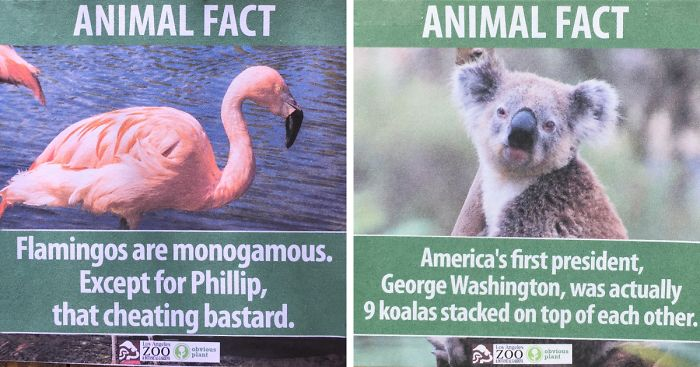 funny-animal-facts-fake-los-angeles-zoo-obvious-plant-fb__700-png